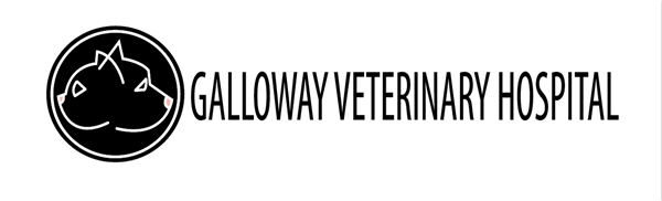 Galloway Veterinary Hospital